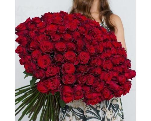 101 роза фридом 70 см