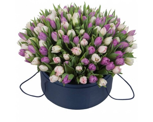 101 бело сиреневый тюльпан