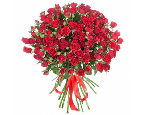 19 красных кустовых роз