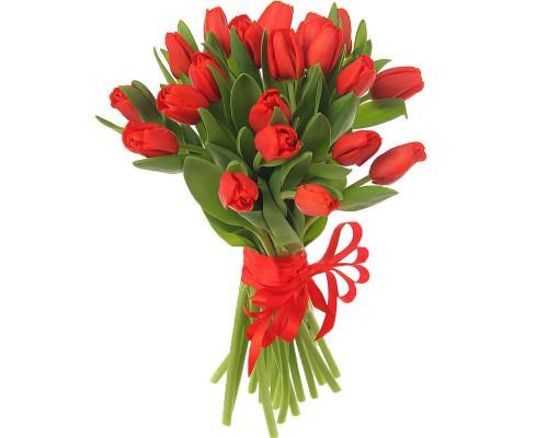 21 red tulip