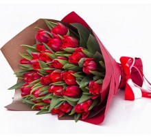 25 red tulips in pack