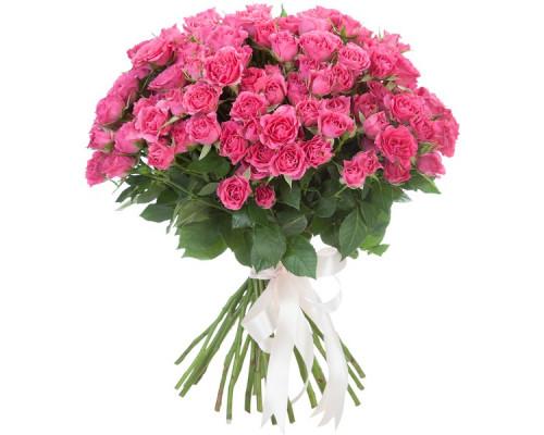 29 малиновых кустовых роз