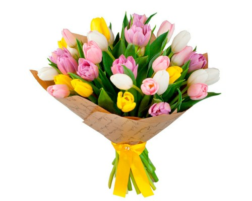 35 multicolored tulips per pack