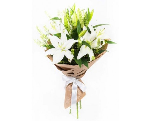 3 lilies in pack