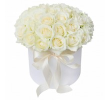 45 white roses in a box