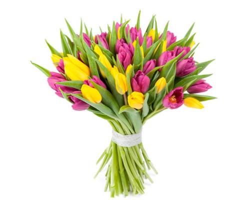 45 тюльпанов