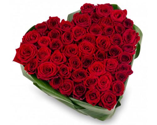 55 роз в форме сердца