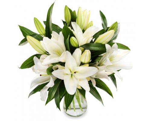 7 lilies
