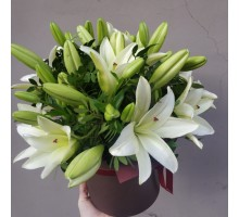 7 lilies in a box