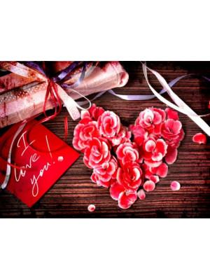 Какие цветы подарить любимой на День влюбленных.