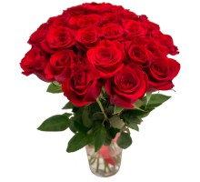 Rose Freedom 25 pcs